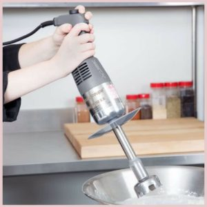 Robot Coupe MMP160VV 7 Mini Immersion Blender